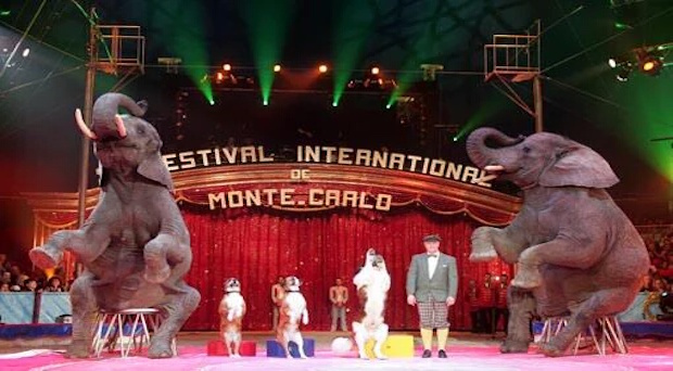 Festival Internacional de Circo de Montecarlo.